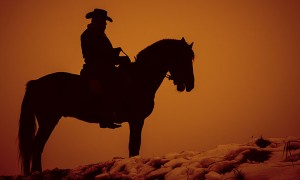 Taming the Microservice Wild West