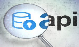 Programming concept: magnifying optical glass with Database With Lock icon and Api word on digital background