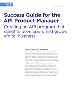 The Definitive Success Guide for the API Product Manager